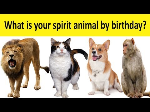 What is Your Spirit Animal By Birthday?