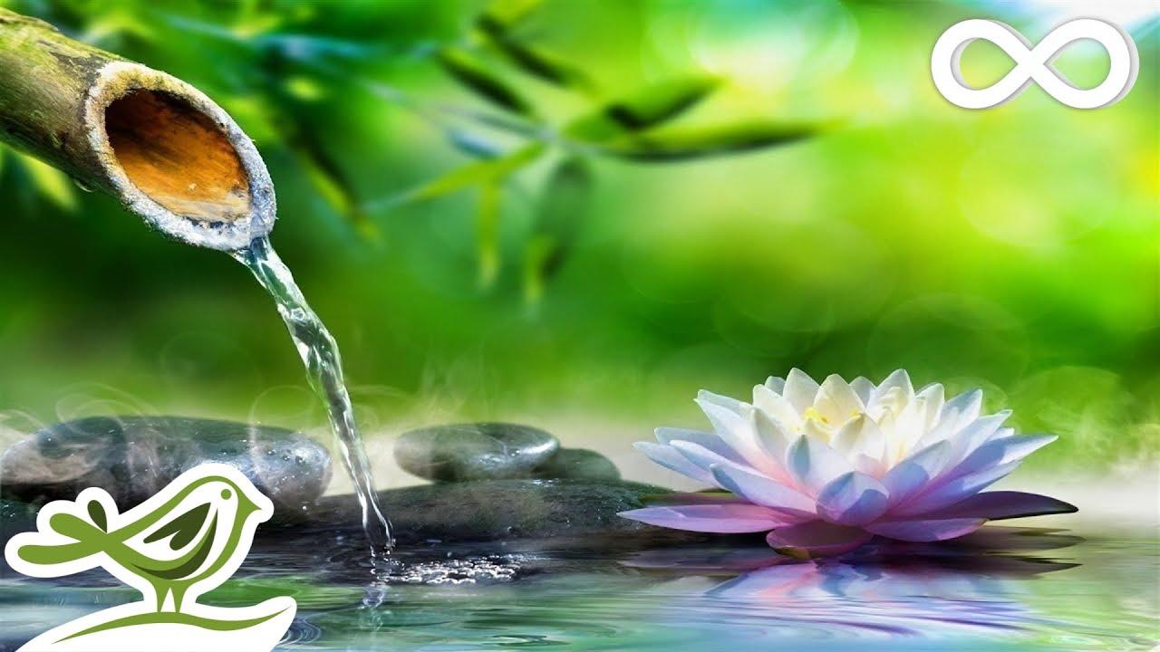 Relaxing Piano Music • Sleep Music, Water Sounds, Relaxing Music, Meditation Music