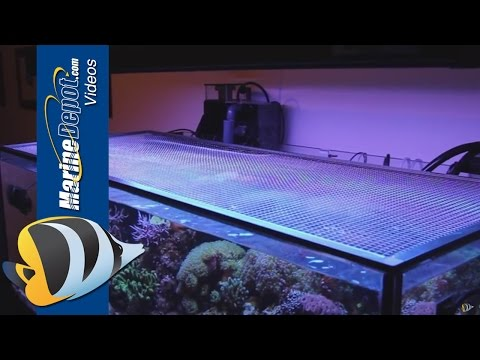 Tutorial: Make a DIY Screen Top for Your Aquarium
