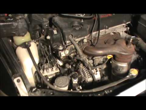 Toyota Drive Belt Replacement (Rookie)