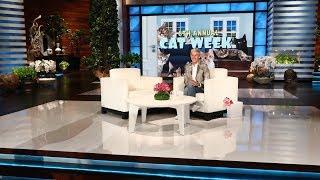 Ellen Kicks Off 8th Annual Cat Week!