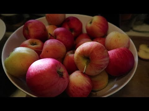 How to Make 4 Apple Products  with 1 Pot and 2 Ingredients?