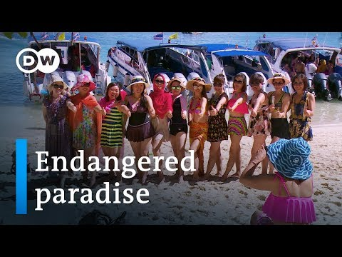 Xxx Mp4 Thailand And The Fallout From Mass Tourism DW Documentary 3gp Sex