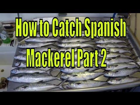 How to catch Spanish Mackerel   Part 2 - Catching!