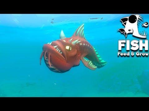 Feed and Grow Fish 34 - O cara de sapato é nervoso!!! (Deathmatch) (GAMEPLAY PT-BR)