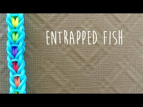 Rainbow loom bands Entrapped Fish bracelet tutorial