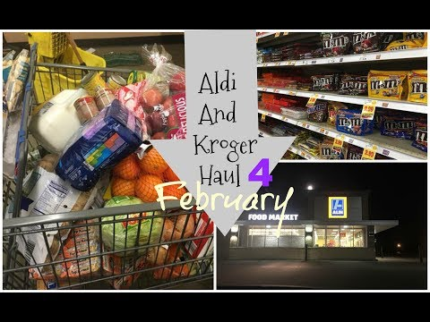Aldi And Kroger Haul Food For A MOnth