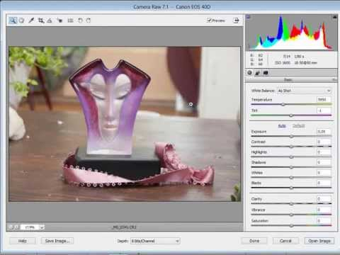 NL Photoshop Elements: RAW Foto Bewerken (Converter)