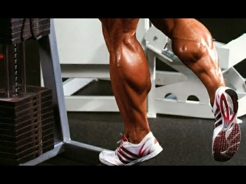 Getting Bigger Calves: The Science Breakdown