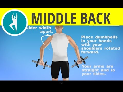 Shoulder and middle back workout with dumbbells: Exercise at home with weights
