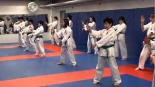 Vancouver Seiyu Karate Children's Class