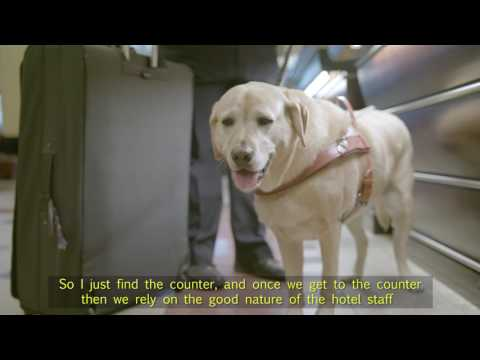 Taking the Lead: How does a Guide Dog know where to go?