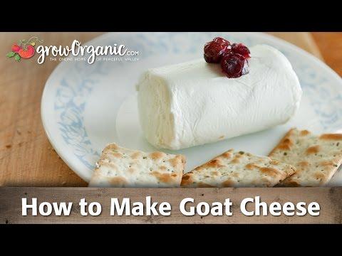 How to Make Organic Goat Cheese