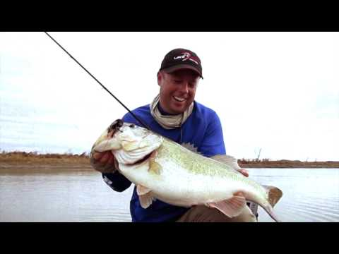 Tips on Where and How to Catch Bass in the Spring