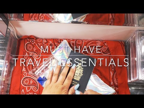 Must Have Travel Essentials    The Savvy Beauty