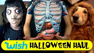 I Bought the First 10 Halloween Items Wish Recommended!