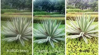 OUKITEL U7 Plus camera vs Bluboo Maya vs HOMTOM HT17 pro