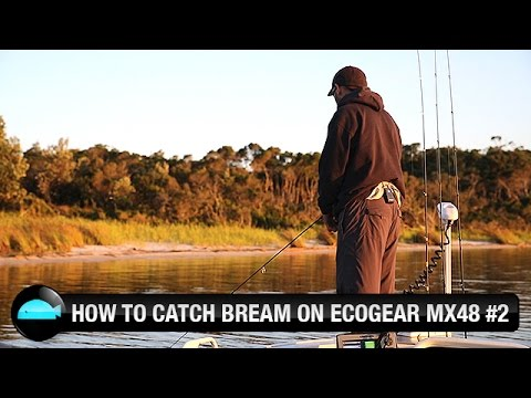 How To Catch Bream On Hardbody Lures | Ecogear | We Flick Fishing Videos