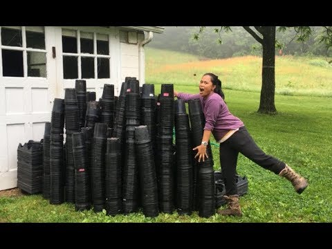 We Just Bought 2500 Plastic Planting Pots On Craigslist For $20