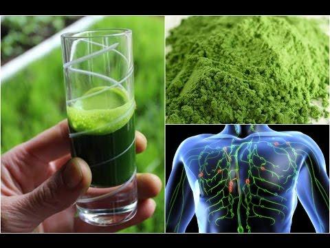 Amazing Facts to Start Drinking Wheatgrass Juice