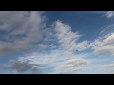 Homemade Delta Stunt Kite