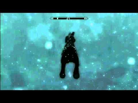 How to Fly in The Elder Scrolls V Skyrim!