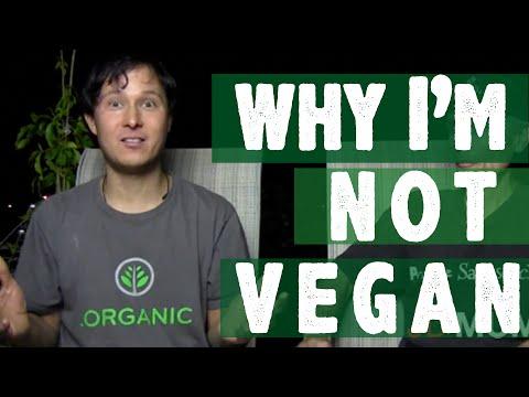 Why I'm Not Vegan - Is anyone 100% Vegan ?