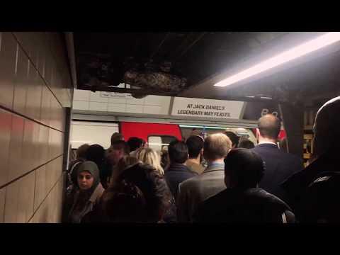 VICTORIA LINE | LONDON VICTORIA STATION | LONDON UNDERGROUND | PEAK HOURS