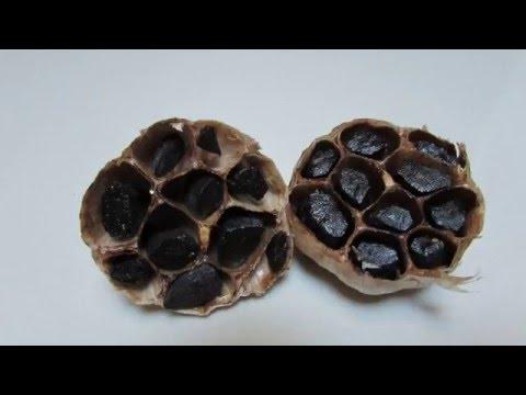 自家制黑蒜 - 絕對不會變石頭!Homemade Black Garlic