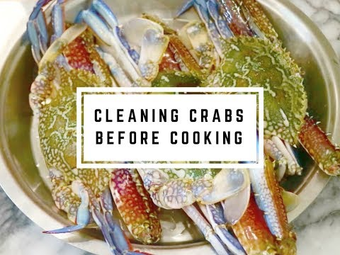 How to Clean Crabs before cooking | Easy Method of Cleaning Fresh Crabs video  - Curry for the Soul