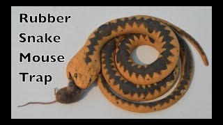 Rubber Snake Mouse Trap In Action With Motion Cameras