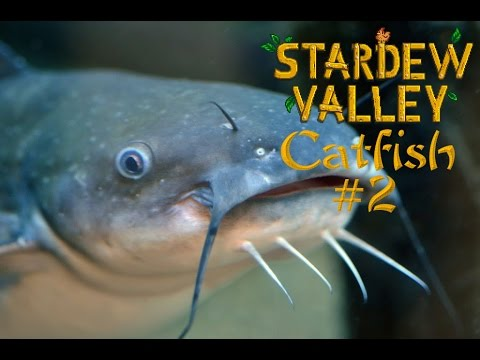Stardew Valley | Catfish Location #2 | Lokacja Catfish-a #2
