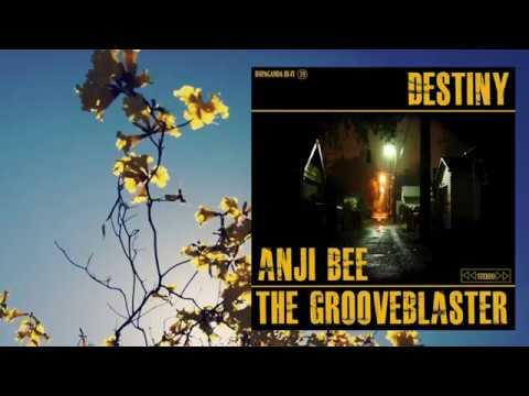 Anji Bee & The Grooveblaster - Destiny [Lyric Video]