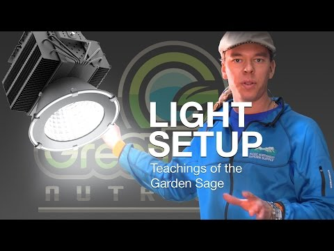 How many grow lights in one room? - The Garden Sage 13