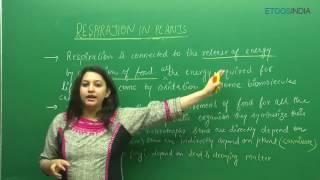 Respiration In Plants by Etoos Faculty Shivani Bhargava (SB) Mam (ETOOSINDIA.COM)