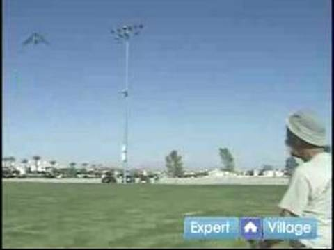 How to Fly Kites : How to Fly Two Line Delta Kites