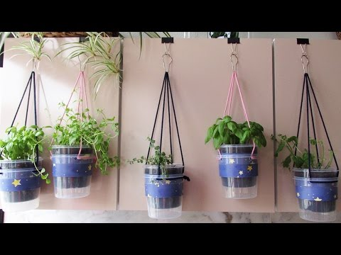 How to make a hanging garden 🌿 in your kitchen with recycled materials - #67