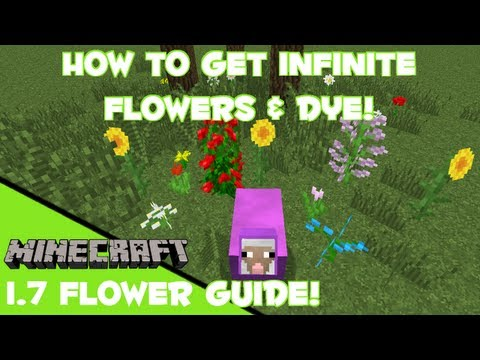 Minecraft: INFINITE FLOWER & DYE FARM!!!