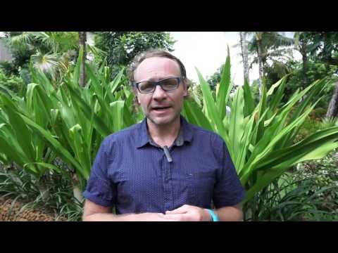 Australian Partner Visa   3 main criteria
