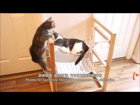 [DIY] 貓咪雙層吊床 Cat Double Decker Hammock