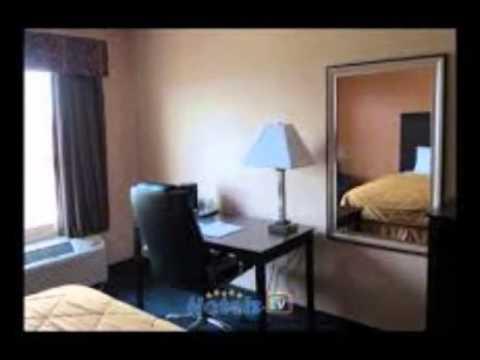 quality suites universal central