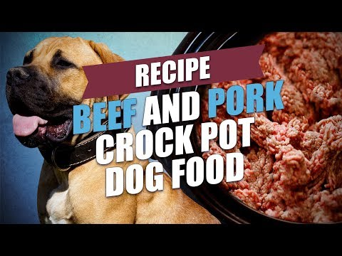 Beef and Pork Crock Pot Dog Food Recipe (Cheap and Easy)
