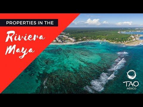 Tao Mexico - Riviera Maya Real estate