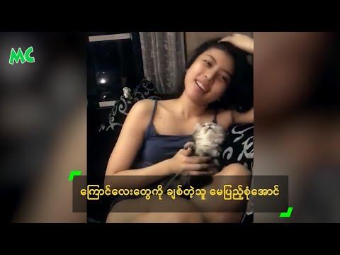 Xxx Mp4 Myanmar Cat Lover May Pyae Sone Aung ေၾကာင္ေလးေတြကို ခ်စ္တဲ့သူ 3gp Sex