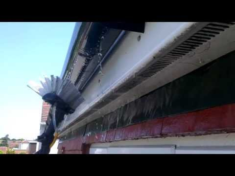 Fascia, Soffit and Gutter Cleaning | How to clean Fascia, Soffits and Gutters