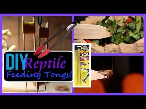 DIY REPTILE FEEDING TONGS | SUPER EASY!!!😆