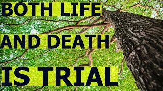 Allah give both LIFE AND DEATH as TRIAL.