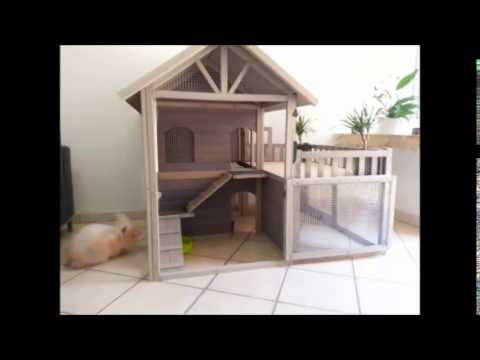 Cute indoor bunny hutch / house