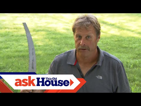 Ask Roger | Pruning Trees with the Three Cut Method