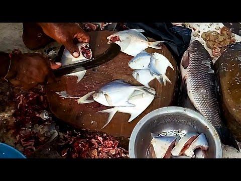 White Pomfret Fish Cutting   Fastest Cutting Fish   White Pomfret Cutting in Fish Market